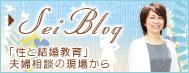 Sei Blog「性(SEX)と結婚教育」夫婦相談の現場から